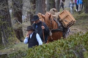 Gefuerte Trekking-Touren mit Tieren