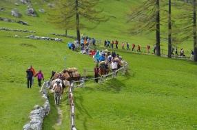 Simlpon-Saeumer Trekking
