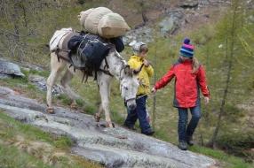 Trekking mit Tieren
