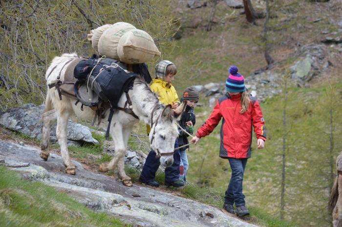 Wandern mit Kindern und Tieren