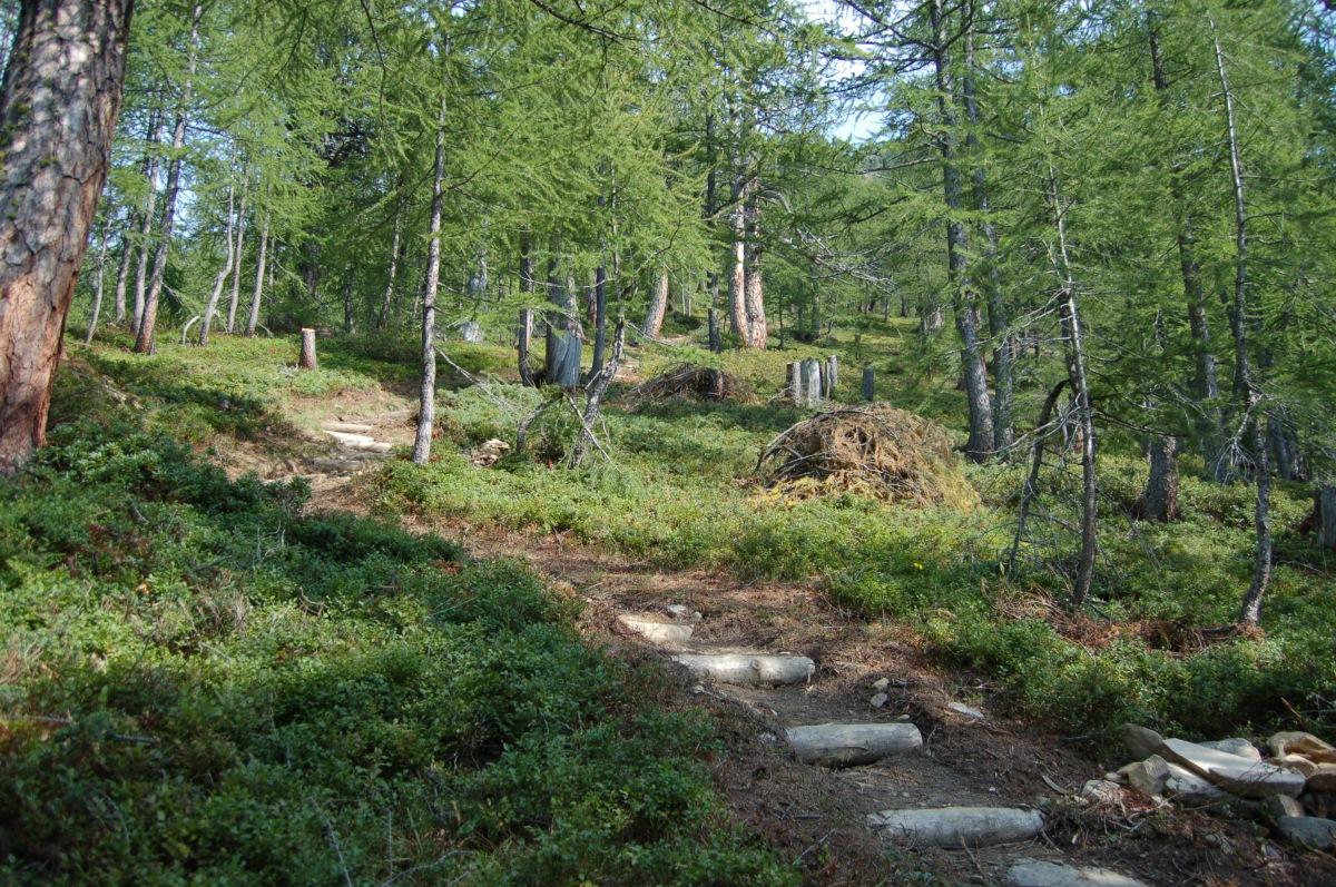 Wander- und Schmugglertour Monscerapass